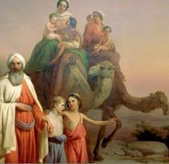 Foundations in Genesis