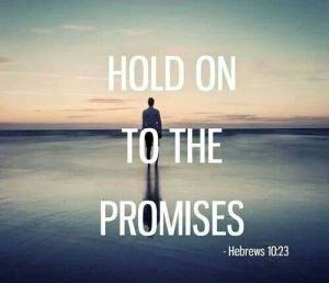 story-of-promise